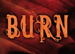 Burn by Julianna Baggott