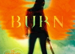 Burn by Paula Weston
